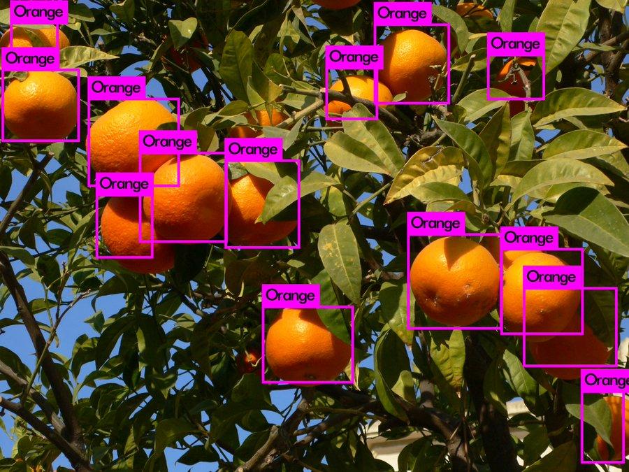 Machine Learning Orange Labels